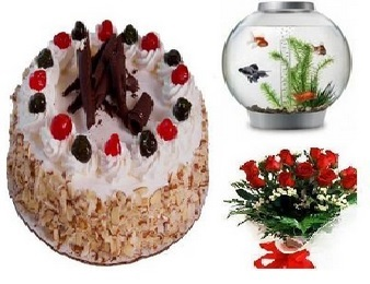 midnight delivery of cakes and flowers Hyderabad